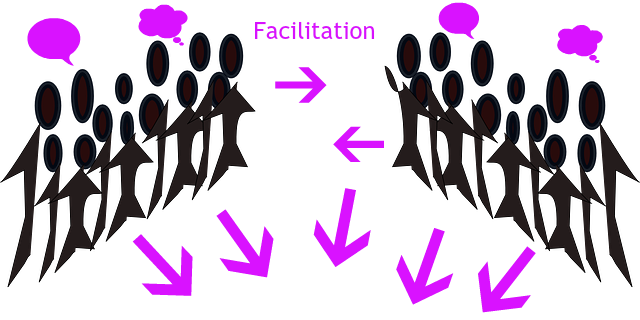 Facilitation people 2