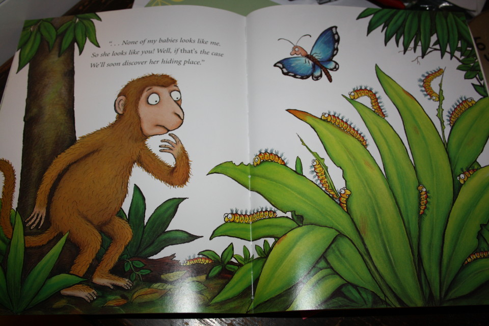 Monkey Puzzle - Julia Donaldson and Axel Scheffler