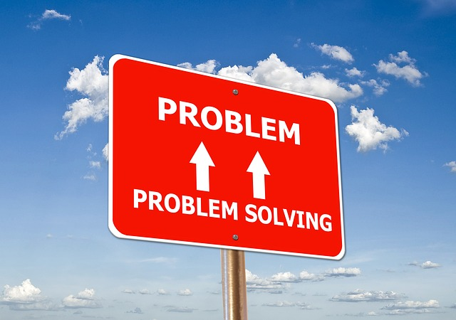 Problem Solving Reviews and Evaluations Ideas Generation Goal Setting ...
