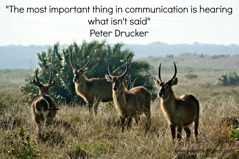 Antelope Drucker