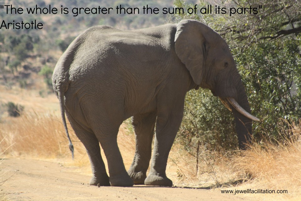 elephant with quote