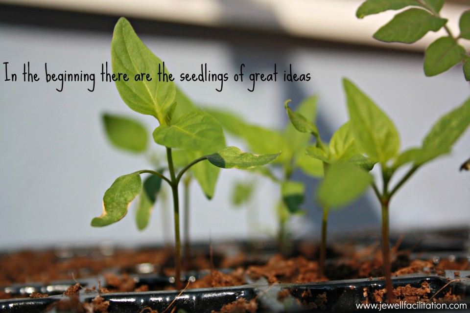 What should you do with the ambitious seedlings of ideas?